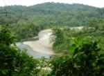 rio_banano_river_view_iii