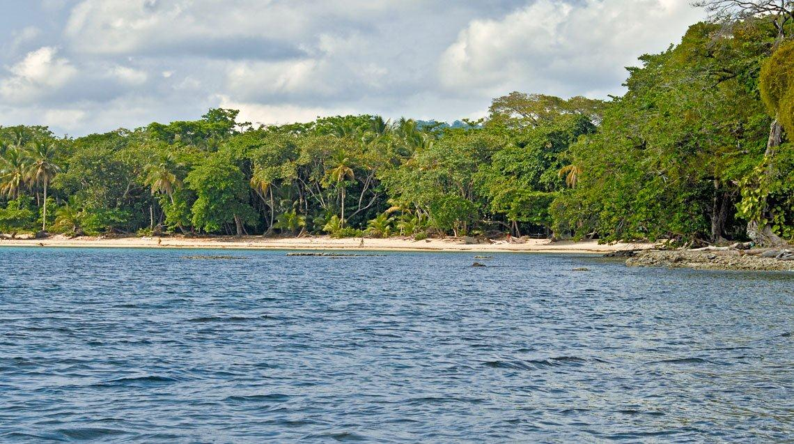Cahuita Real Estate